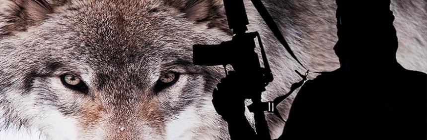 lobos-terrorismo